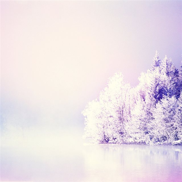 Dreamy Snowy Forest iPad wallpaper