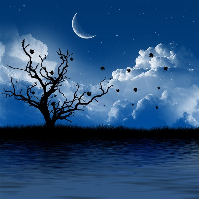 Nature Night Landscape iPad wallpaper