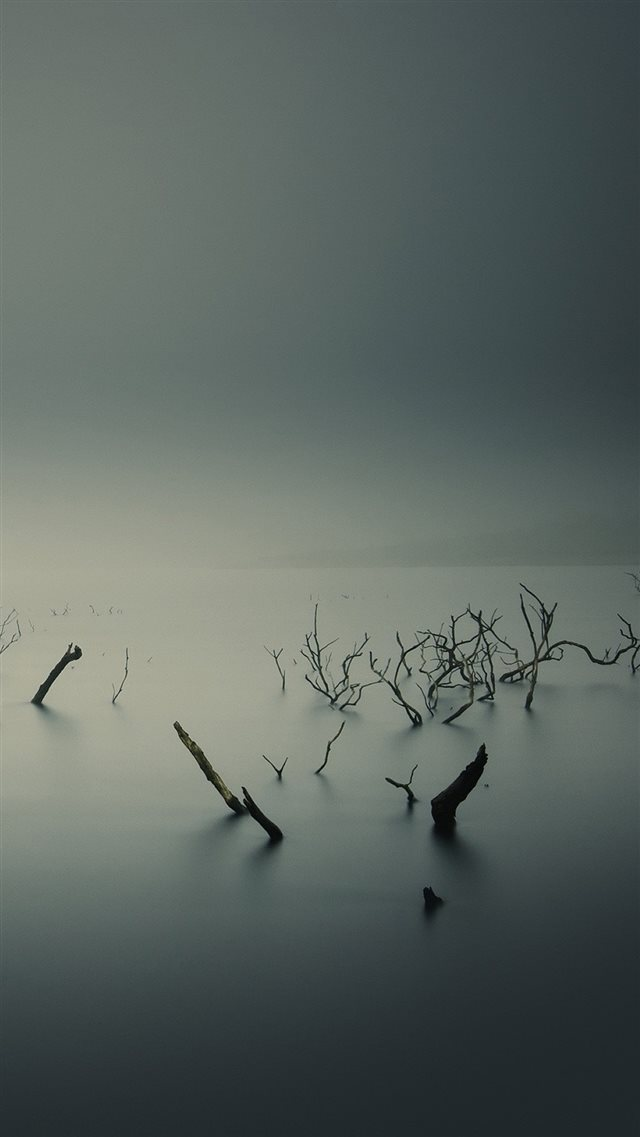 Ubuntu Gnome Mist Fog Underwater Trees iPhone 8 wallpaper