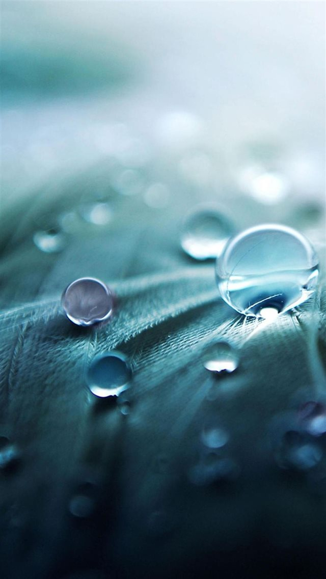 Water Drops iPhone 8 wallpaper
