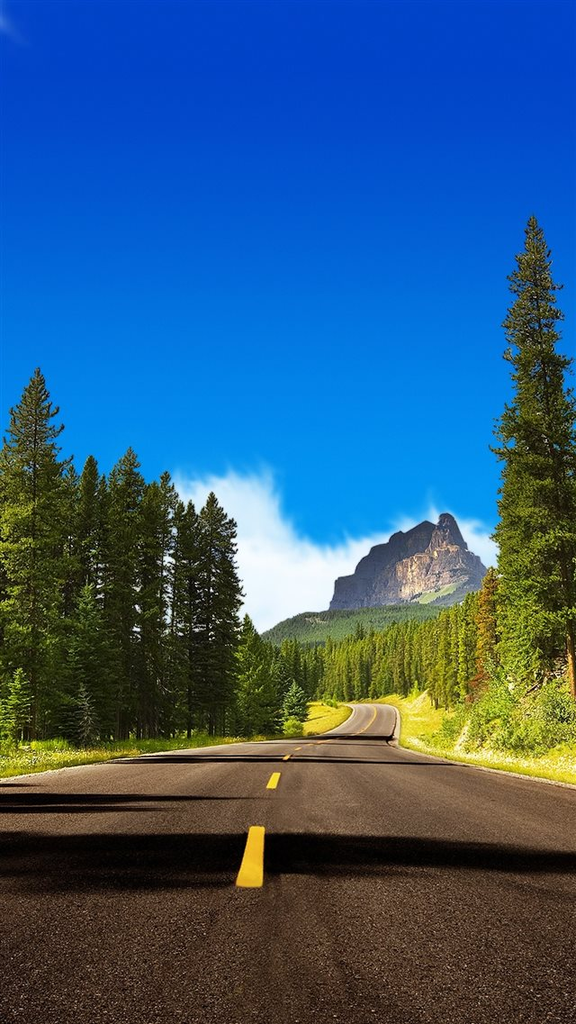 Road Wandering In Mountain Forest iPhone 8 wallpaper