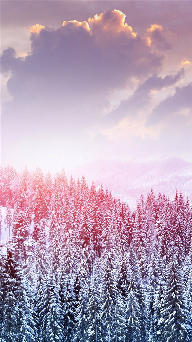 Winter Snow Trees Mountains Forest Sky Clouds iPhone 8 wallpaper