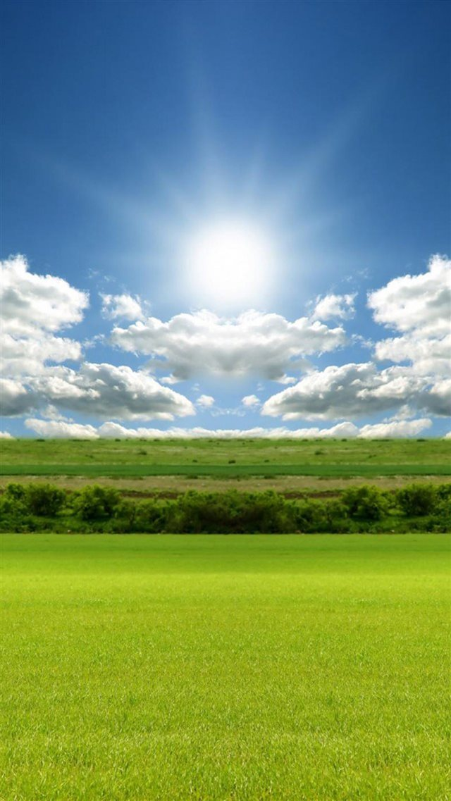 Sunlight Nature Green Field Sky iPhone 8 wallpaper