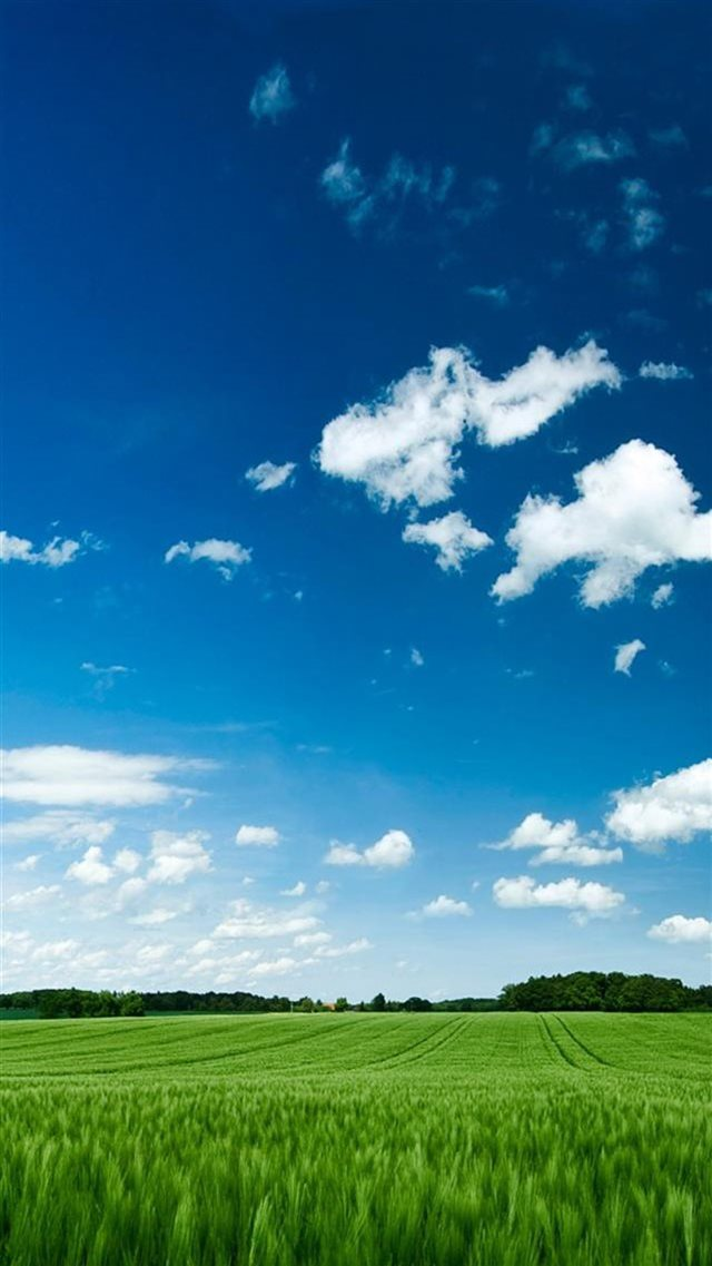 Clear Farmland Landscape iPhone 8 wallpaper