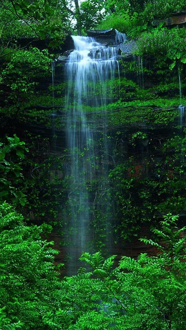 Nature Forest Waterfall iPhone 8 wallpaper
