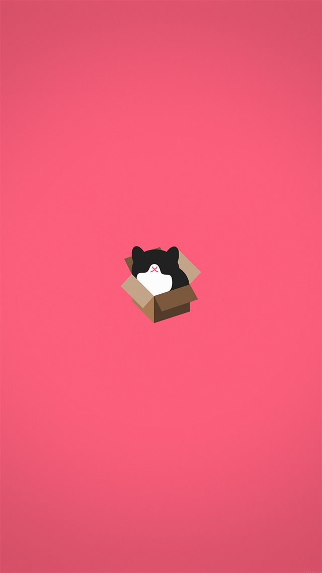 Cat Box Red Illust Animal Art Minimal iPhone 8 wallpaper