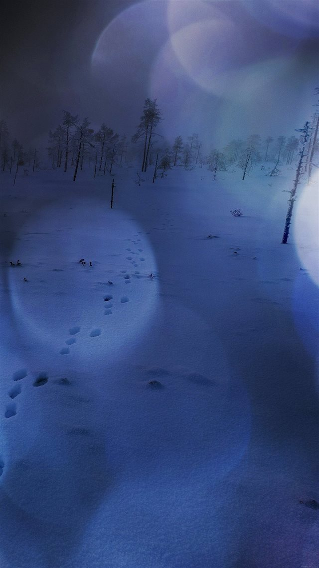 Snow Walk Winter Dark Blue Bokeh Footprints Nature iPhone 8 wallpaper