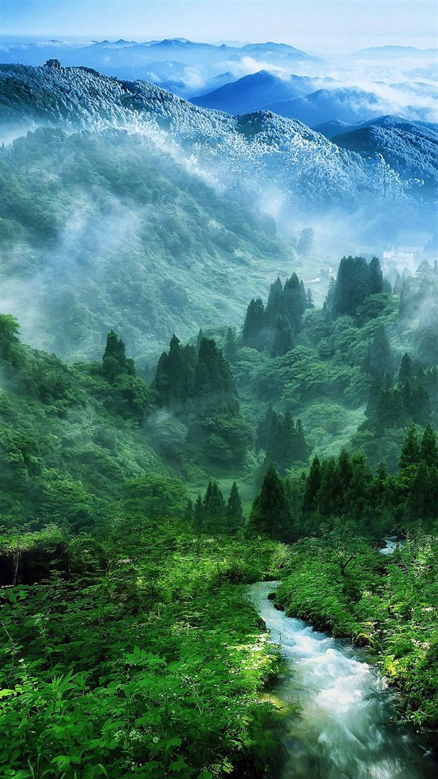 Nature Mist Mountain Wood Forest River Landscape iPhone 8 wallpaper