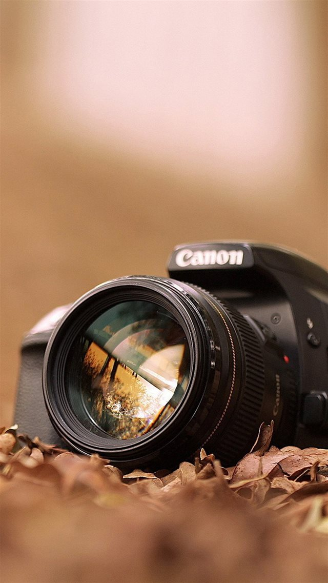 Canon Camera Macro Fall Leaves iPhone 8 wallpaper
