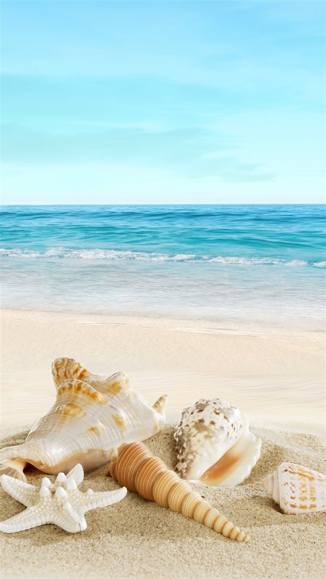 Nature Sunny Sea Shell Beach iPhone 8 wallpaper