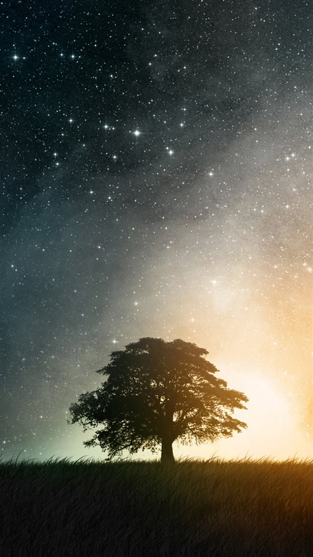 Night Hill Top Lonely Tree Vast Starry Skyscape iPhone 8 wallpaper