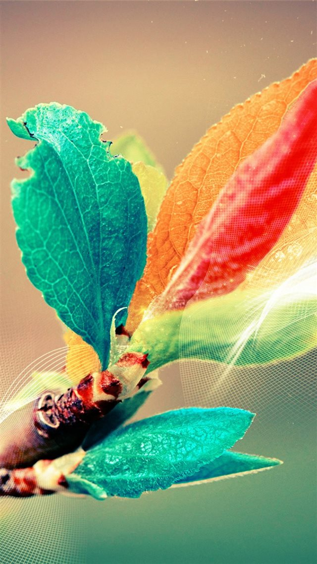 Beautiful Colorful Bud Leaf Branch Silk Line Art iPhone 8 wallpaper