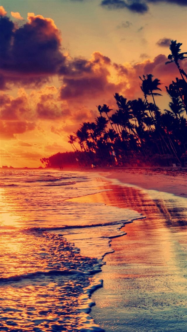 Nature Fire Sunset Beach iPhone 8 wallpaper