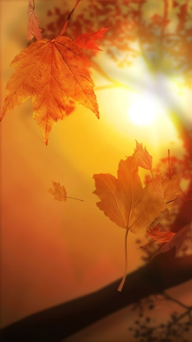 Nature Autumn Sunset Yellow Leaves Flyiing Sunshine iPhone 8 wallpaper