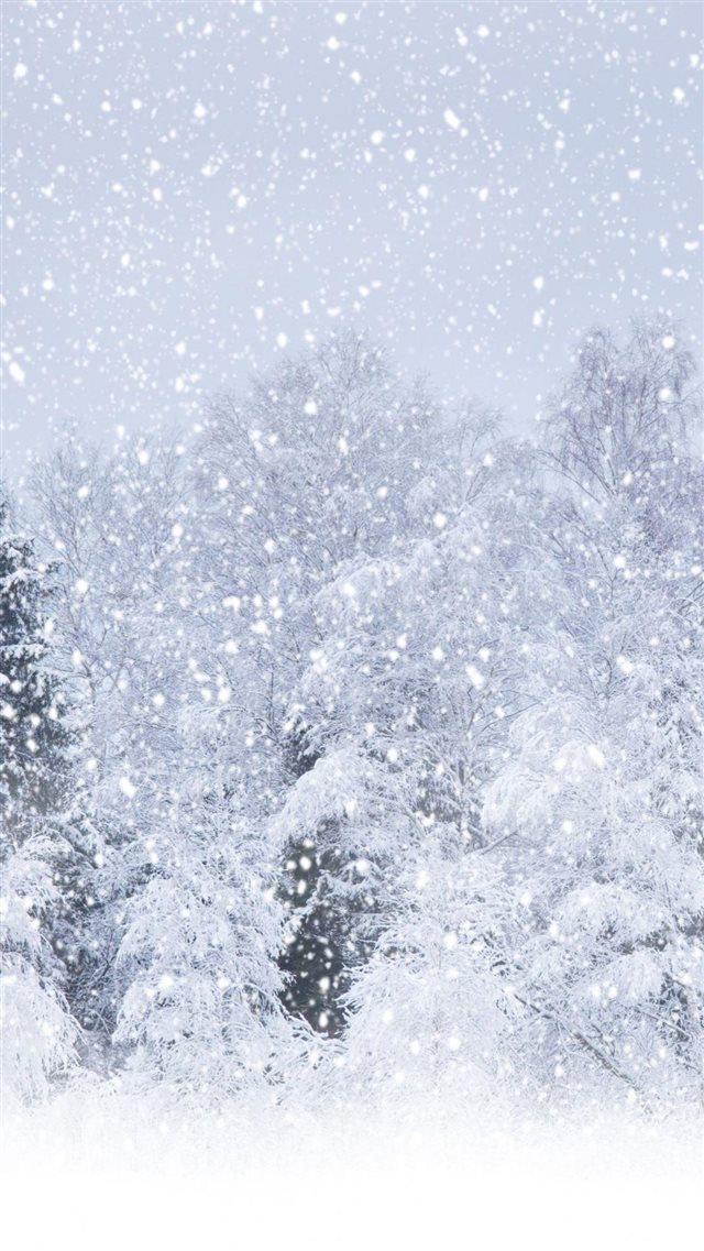 Heavy Snow Forest Landscape iPhone 8 wallpaper