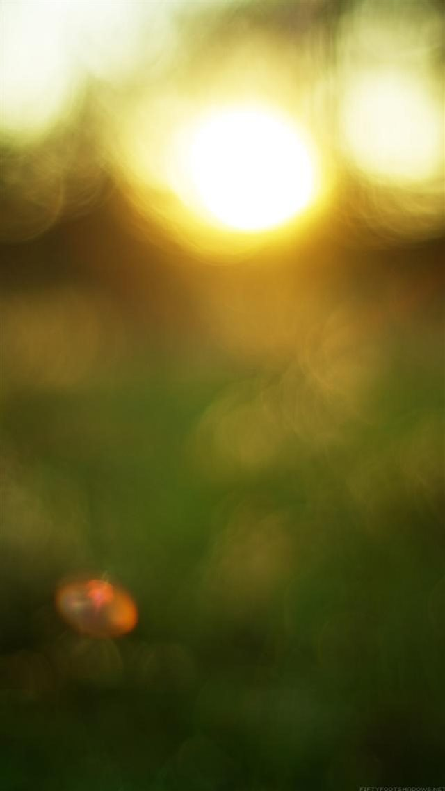 Nature Sunset Bokeh Blur Background iPhone 8 wallpaper