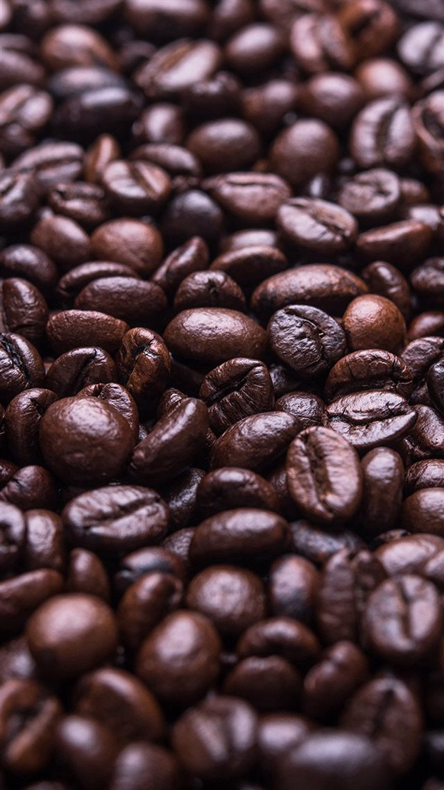 Coffee Bean Holic Brown Food Soft iPhone 8 wallpaper