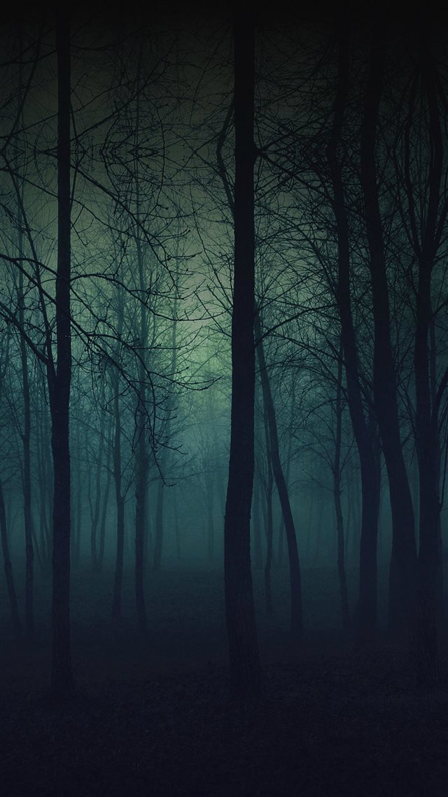 Eerie Forest Night iPhone 8 wallpaper