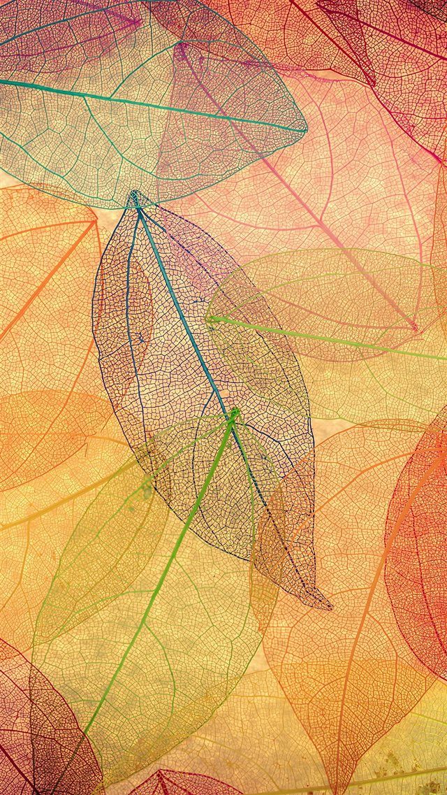 Rainbow Color Leaf Art Fall Nature Pattern iPhone 8 wallpaper
