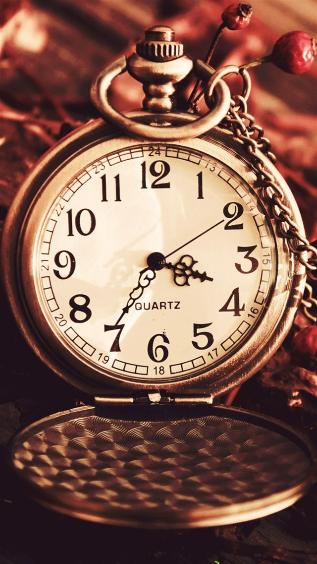 Vintage Watch Pocket Macro Autumn Berries Dry Chain Dial iPhone 8 wallpaper