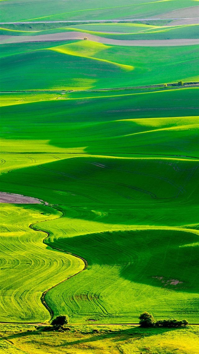 Nature Fresh Grassland Landscape iPhone 8 wallpaper