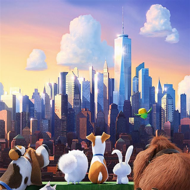 Secret Life Of Pets Animation Art Illustration iPad wallpaper