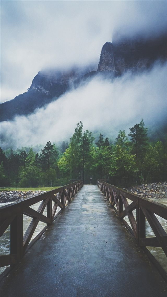 Forest River Crossing Mountain Fog  iPhone 8 wallpaper