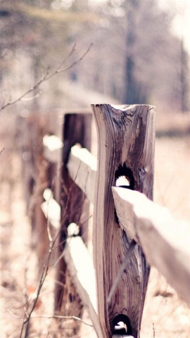 Country Suburban Forest Fence Bokeh iPhone 8 wallpaper