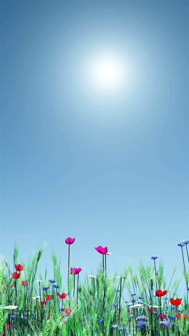 Little Wild Flower Sunshine Bright Scenery iPhone 8 wallpaper