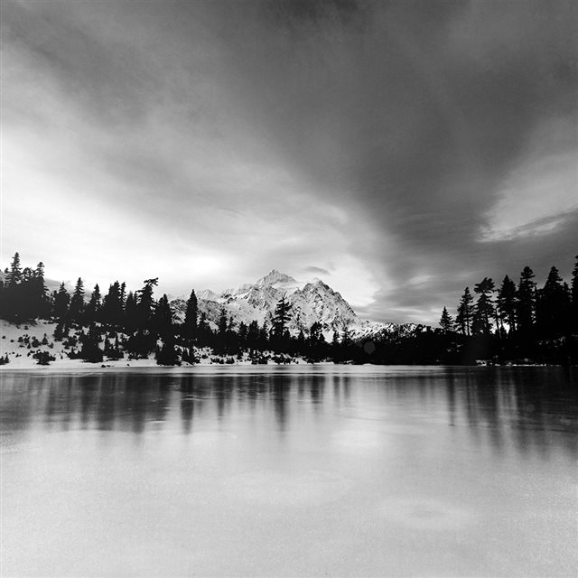 Frozen Lake Winter Snow Wood Forest Cold Bw Dark iPad wallpaper