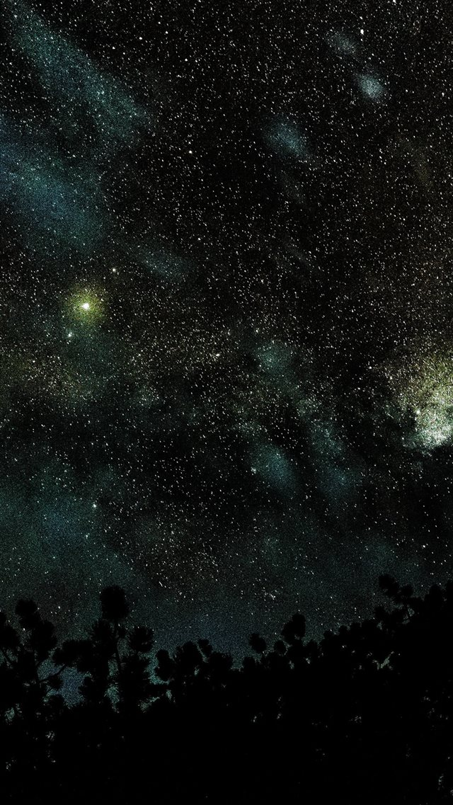 Space Star Night Sky Fall Nature Wood Dark Blue iPhone 8 wallpaper