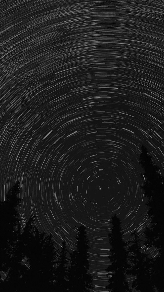 Star Trail Green Tree Space Night Dark Nature iPhone 8 wallpaper