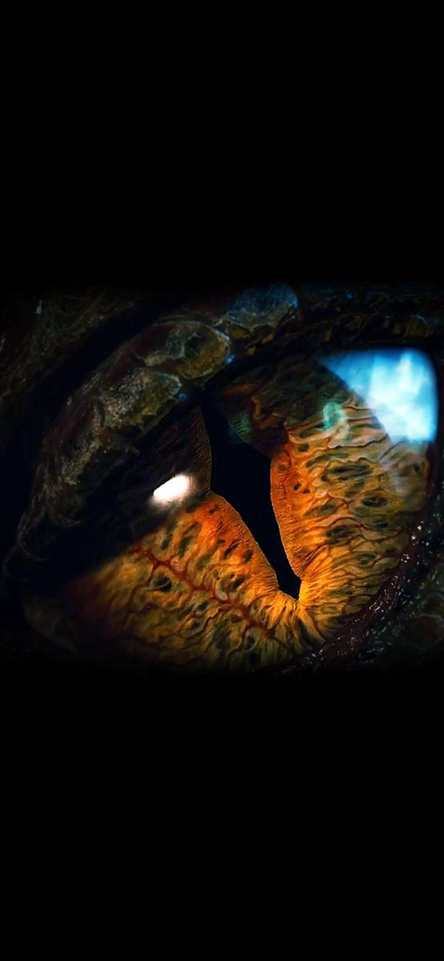 Eye Dragon Film Hobbit The Battle Five Armies Art Dark iPhone 11 wallpaper