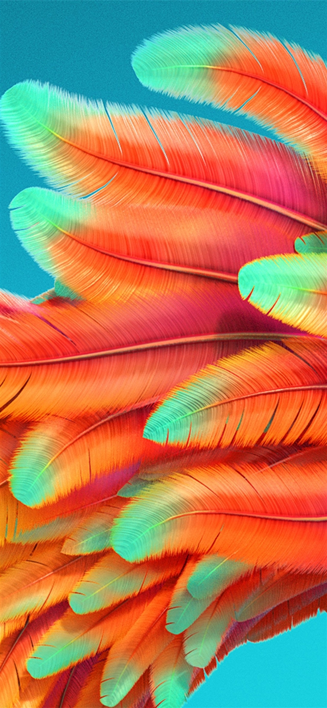 Bird Color Rainbow Red Pattern Background Iphone X Wallpaper
