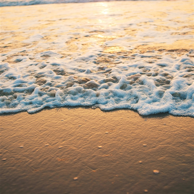 Beach gold sea iPad Pro wallpaper
