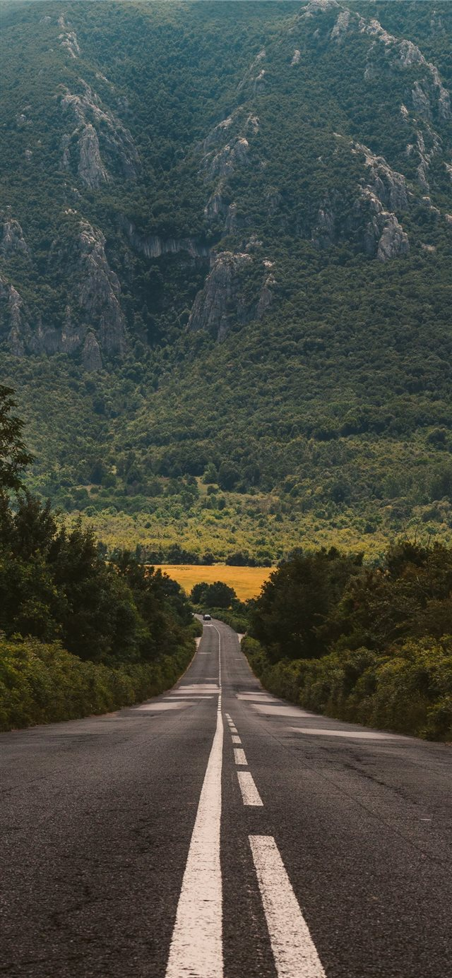 Adventure is out there iPhone X wallpaper