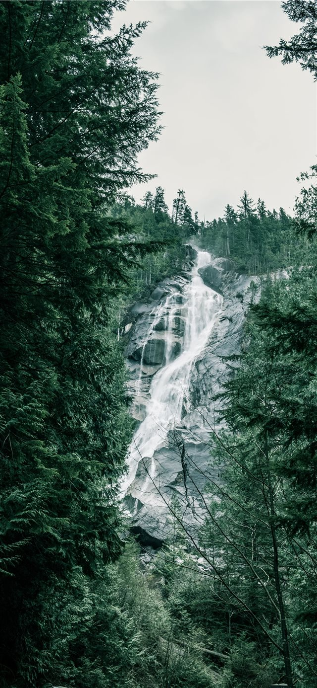 British Columbia  Canada iPhone 11 wallpaper