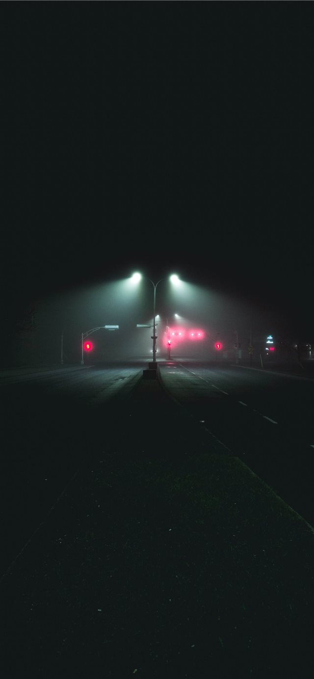 Foggy boulevard iPhone X wallpaper