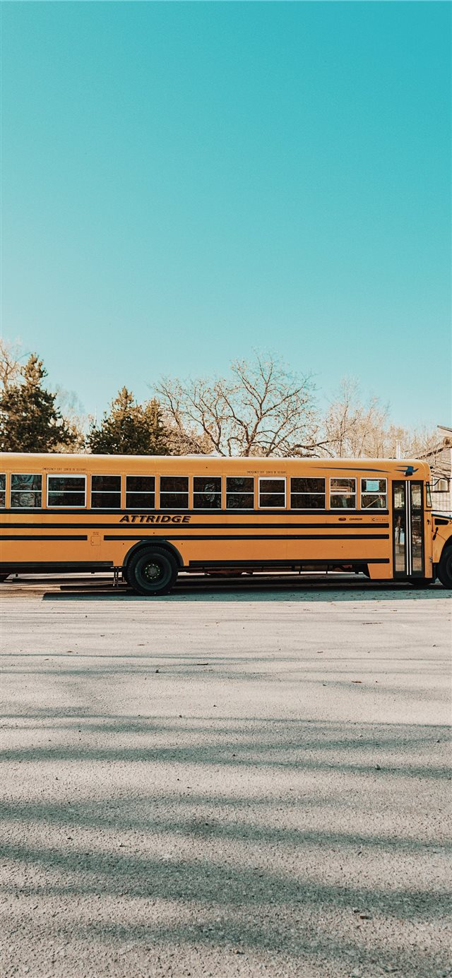 School Bus   Toronto iPhone X wallpaper