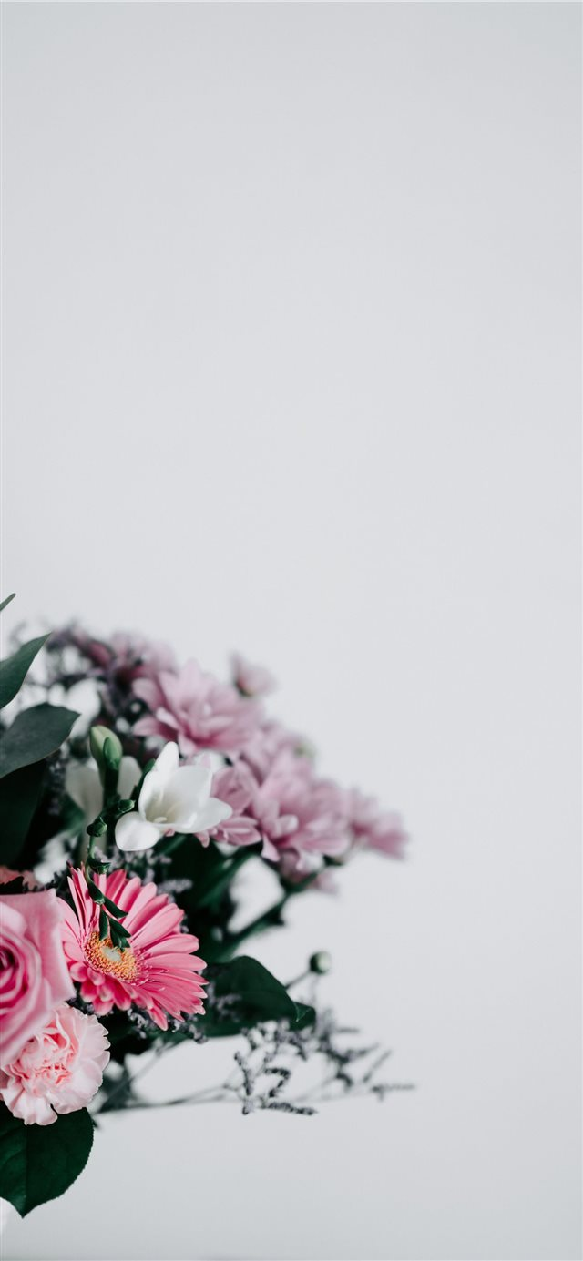 Flowers with blank space iPhone X wallpaper