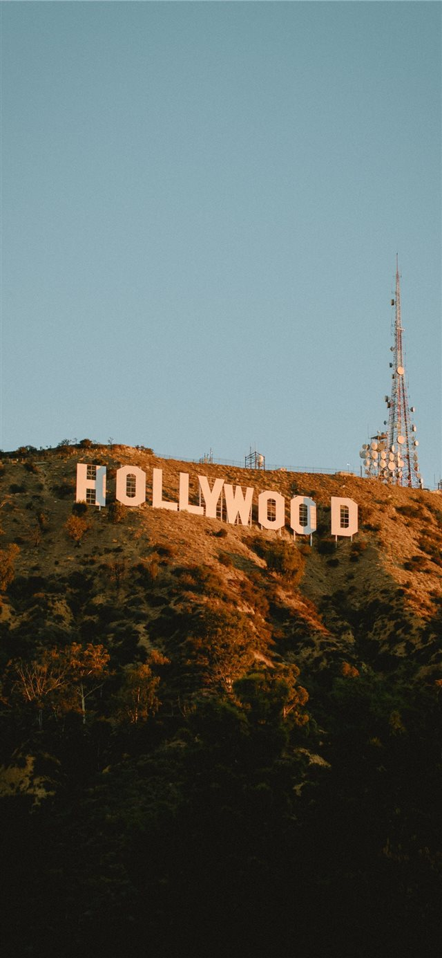Hollywood Sunrise iPhone 11 wallpaper