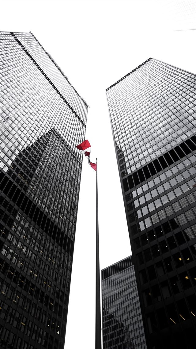 OH CANADA iPhone 8 wallpaper