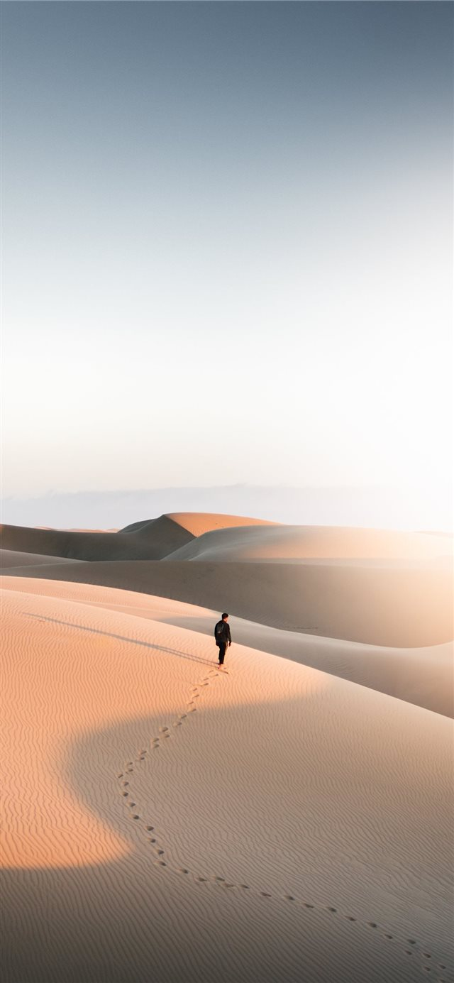 Oceano Dunes SVRA  Oceano  United States iPhone X wallpaper