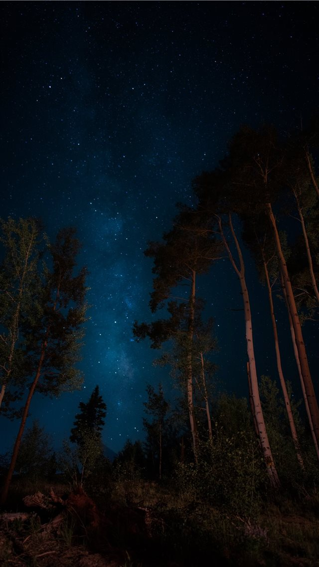darkness iPhone 8 wallpaper