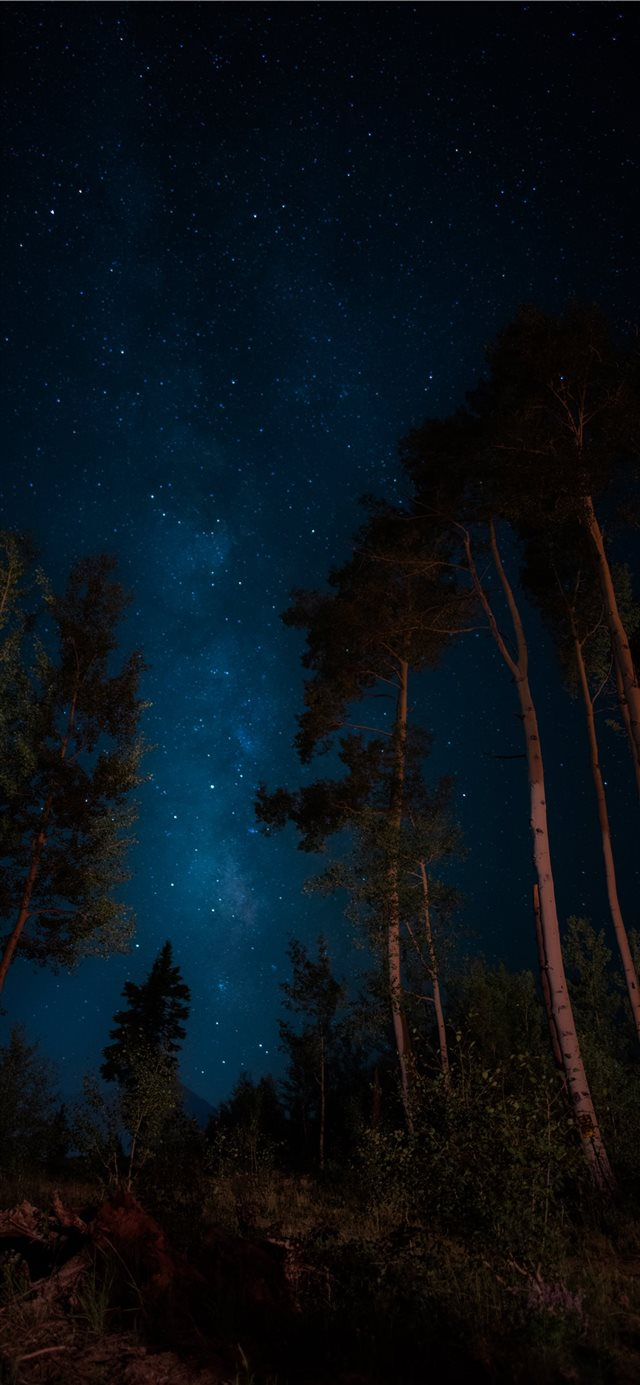darkness iPhone 11 wallpaper