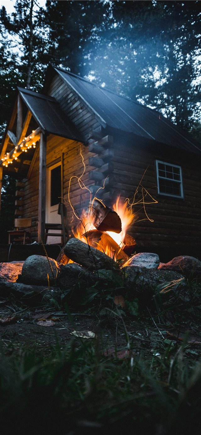 Cabin in the Woods iPhone X wallpaper