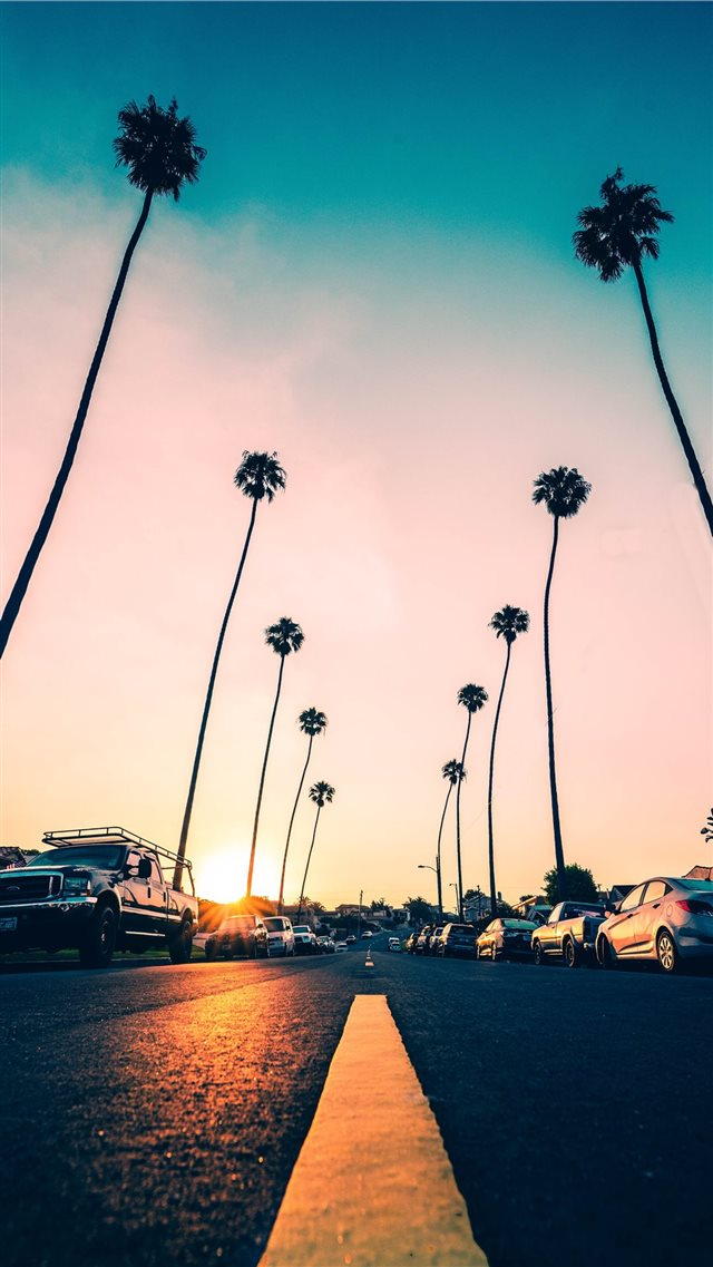 Hit the Road iPhone 8 wallpaper