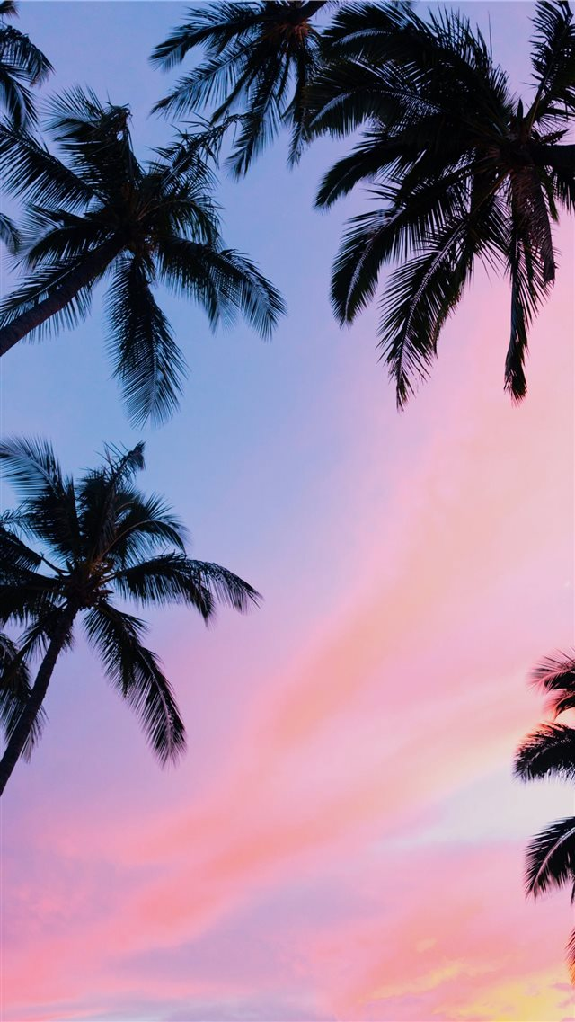 Kihei  United States iPhone SE wallpaper