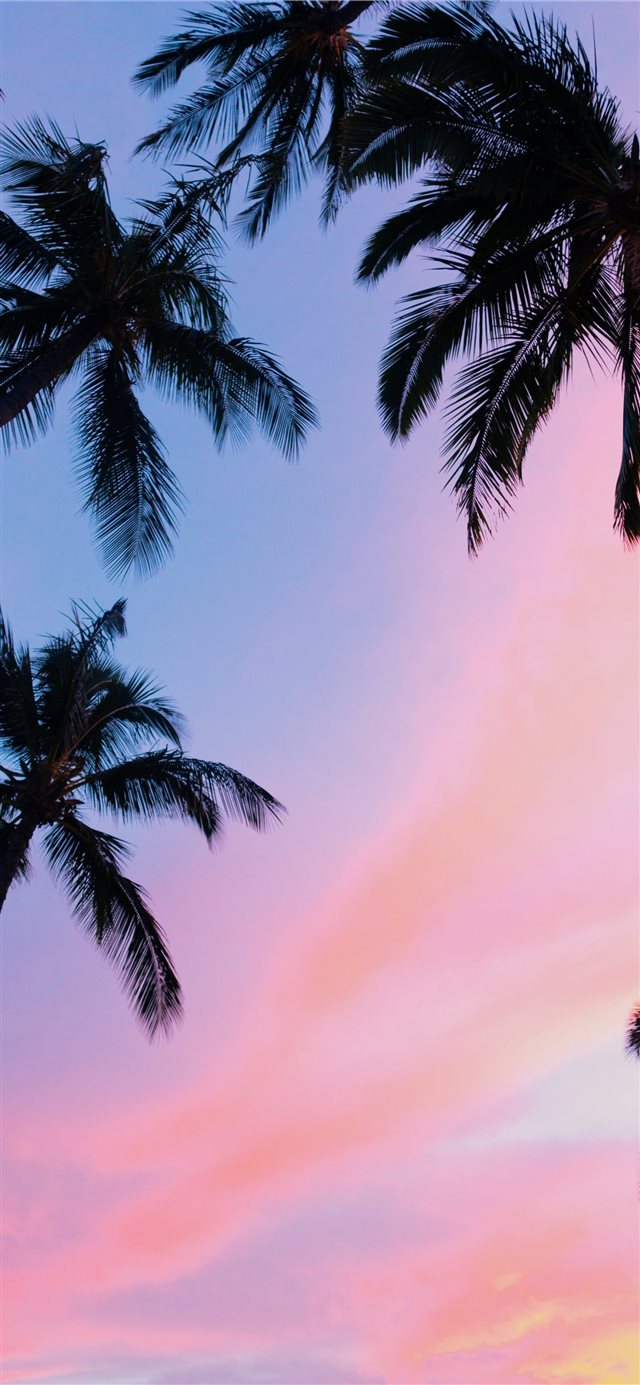Kihei  United States iPhone X wallpaper