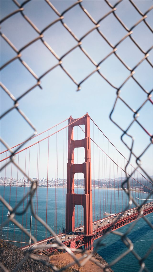 Through the Fence iPhone SE wallpaper